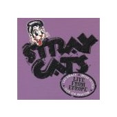 STRAY CATS: Live In Helsinki 9th July 2004